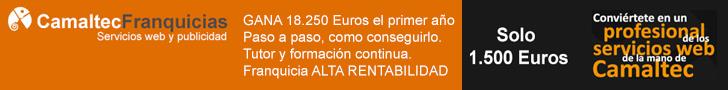 Franquicia rentable de Camaltec Ibérica, diseño web profesional