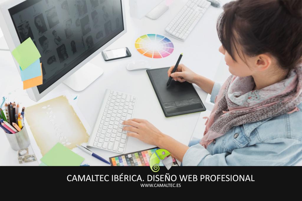 diseno web profesional 1024x683 Diseño y desarrollo web en San Bartolomé de Tirajana