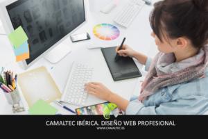 Diseno Web Profesional