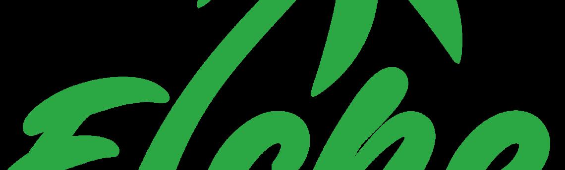 Nuevo logo para elcheonline.es