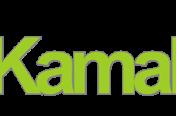 Nuevo Logo kamaltec.com
