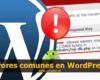 errores comunes wordpress 100x80 c Mantenimiento Web