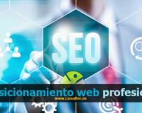 Servicio de posicionamiento web profesional