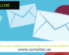 Por qué tu negocio funcionará mejor con el uso de newsletter 100x80 c Diseño y desarrollo web en Elche
