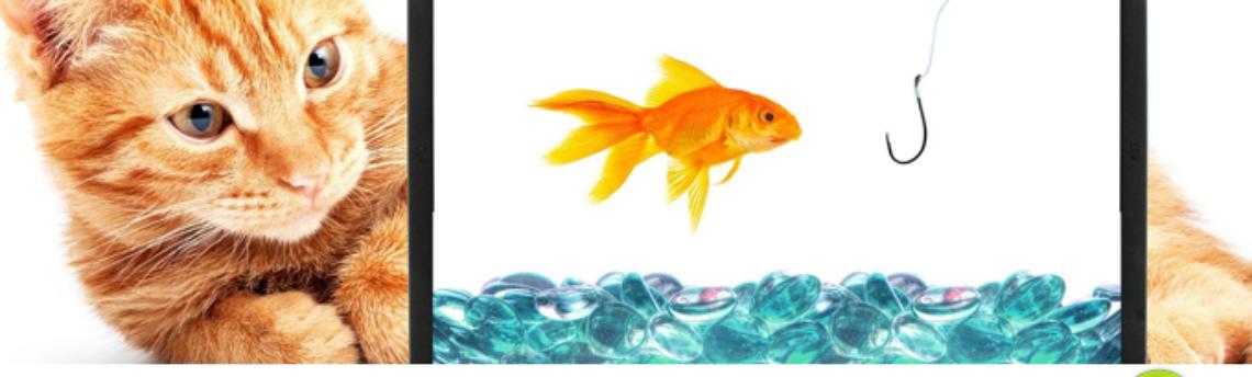 Solo 3 consejos para diseñar con éxito la página web de tu empresa