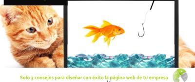 Solo 3 consejos para diseñar con éxito la página web de tu empresa 400x170 c Franquicia diseño web