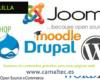 Gestores de contenidos gratuitos para crear páginas web 100x80 c Diseño y desarrollo web en Melilla