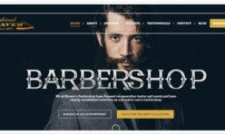 Estilo diseño web para peluquerías 16