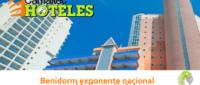 Benidorm exponente nacional en el turismo digital 200x85 c Franquicia diseño web