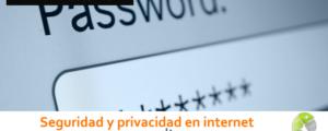 Seguridad y privacidad en internet 300x120 c Informática Alicante