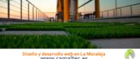 Diseño y desarrollo web en La Moraleja 200x85 c Franquicia diseño web
