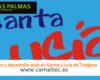 Diseño y desarrollo web en Santa Lucía de Tirajana 100x80 c Diseño y desarrollo web en Las Palmas