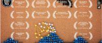A GIRL NAMED ELASTIKA Un vídeo stop motion realizado con chinchetas y gomas elásticas IMPRESIONANTE 200x85 c Franquicia diseño web