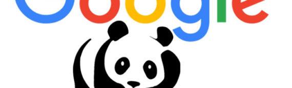 Google Panda es quien manda